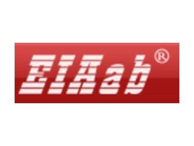 Eiaab Inc. - Company formation