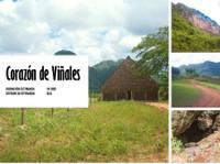 PalmHabana Tour & Travel (1) - Agencias de viajes online