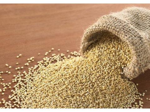 Quinoa Ratgeber - Bio-Lebensmittel
