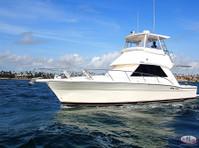 Big marlin Charters Punta Cana (1) - Fishing & Angling