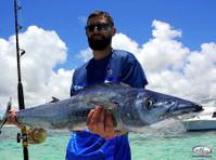 Big marlin Charters Punta Cana (3) - Fishing & Angling