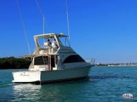 Big marlin Charters Punta Cana (6) - Fishing & Angling