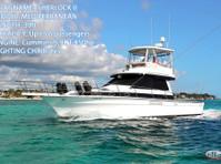 Big marlin Charters Punta Cana (7) - Fishing & Angling