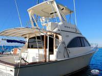 Big marlin Charters Punta Cana (8) - Fishing & Angling