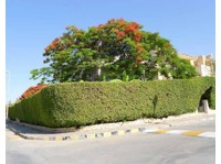 Marina Villa North Coast Egypt (6) - Holiday Rentals