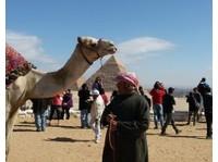 Nile Holiday (6) - Travel Agencies
