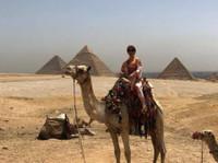 Deluxe Tours Egypt (2) - Travel Agencies