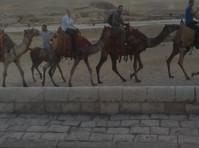 Live the history (4) - Agencias de viajes