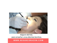 Segurcorazon (5) - Health Insurance
