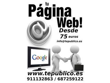 Tepublico.es - Diseño Web