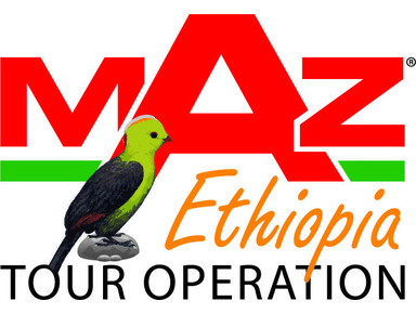 Maz Ethiopia Tour Operation - Travel Agencies
