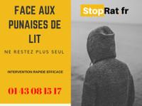 Stoprat - Deratisation Paris (1) - Maison & Jardinage