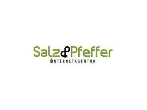Internetagentur Salz & Pfeffer - Webdesign