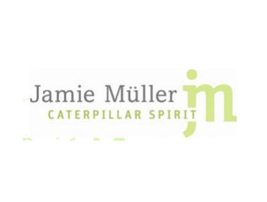Caterpillar Spirit - Coaching & Training