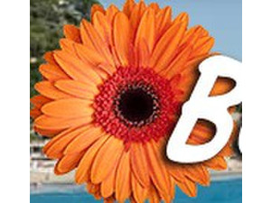BlumenRiviera - Holiday Rentals