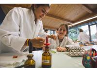 Bavarian International School - Haimhausen Campus (7) - International schools