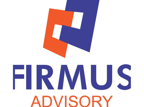 Firmus Advisory Ltd - Company formation