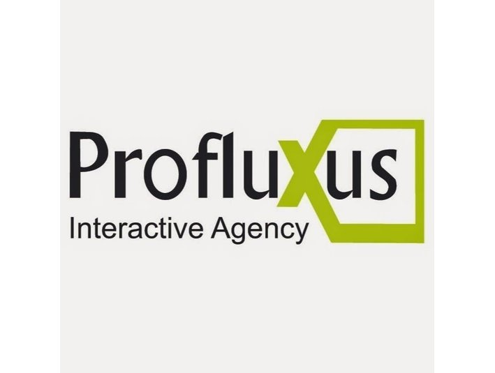 Profluxus Interactive Agency - Webdesign