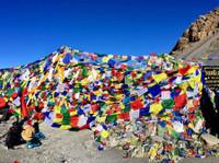 Alpine Ramble Treks (4) - Travel Agencies
