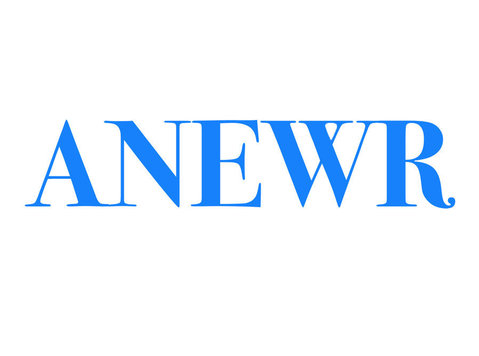 ANewR Consulting Limited - Consultancy