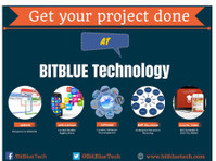 Bitblue Technology (8) - Business & Networking