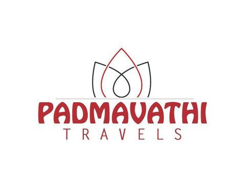 padmavathi travels t-nagar - Travel Agencies