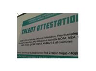Talent Overseas (3) - Consultancy