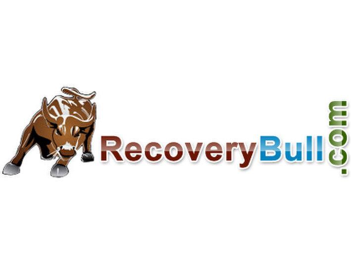 RecoveryBull.com - Company formation