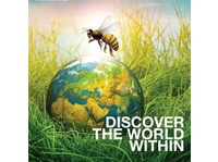 khidma Tourism and Transport Pvt Ltd (1) - Travel Agencies