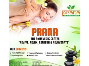 Prana Ayurvedic Centre - Spas