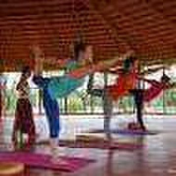 AyurYoga Eco-Ashram India - Yoga Teacher Training, Ayurveda - Gimnasios & Fitness