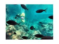 Bond safari Scuba diving (2) - Deportes acuáticos & buceo