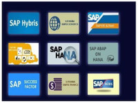 Online Sap Trainers (2) - Formation