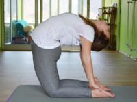 Yoga Teacher Training in India - Bodhi Yoga (8) - Gimnasios & Fitness
