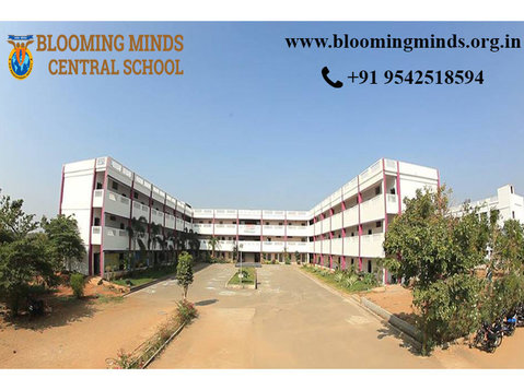 Blooming Minds Central School - International schools