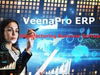 veenapro erp solutions (3) - Webdesign