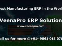 veenapro erp solutions (4) - Webdesign