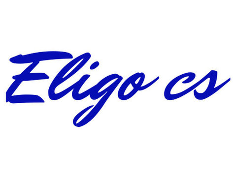 Eligo Creative Services - Webdesign