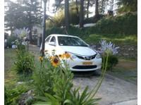 Kalima Taxi Service (1) - Car Rentals