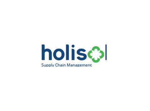 Holisol Logistics Pvt Ltd - Consultancy