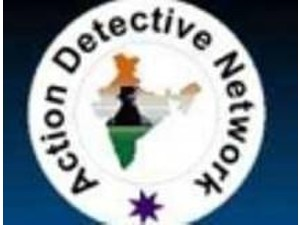Action Detective Network - Consultancy