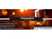 Voice Over Artist, E-learning services, film dubbing VO. - TV, Radio & Print Media