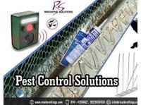 Reach Nettings Solutions Pvt. Ltd (2) - Pet services