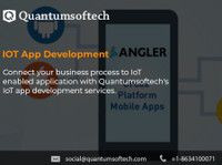 Quantumsoftech (7) - Networking & Negocios