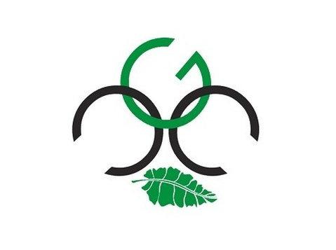 Cicada Green Consultants - Webdesign