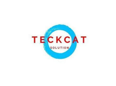 Teckcat Network Solutions Pvt Ltd - Coaching & Training