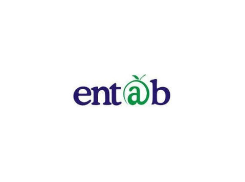 Entab Infotech Pvt Ltd - Consultancy