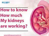 Rajesh Goel, Kidney Care Centre (7) - Hospitals & Clinics