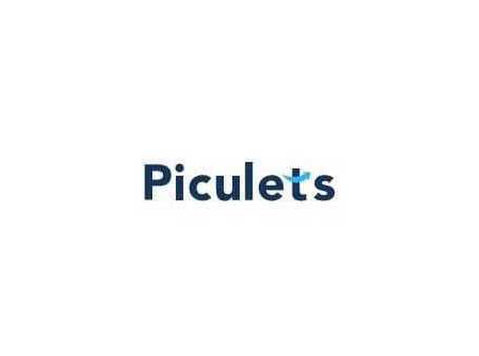 Piculets Solutions Private Limited - Consultancy