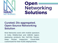 Niral Networks (2) - Business & Networking